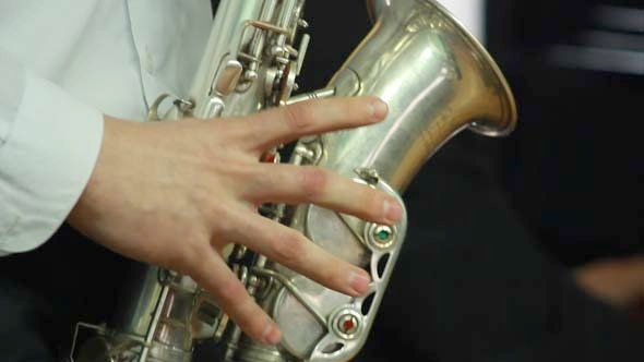 Hands Playing Wind Instrument 9