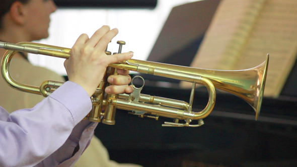 Hands Playing Wind Instrument 12