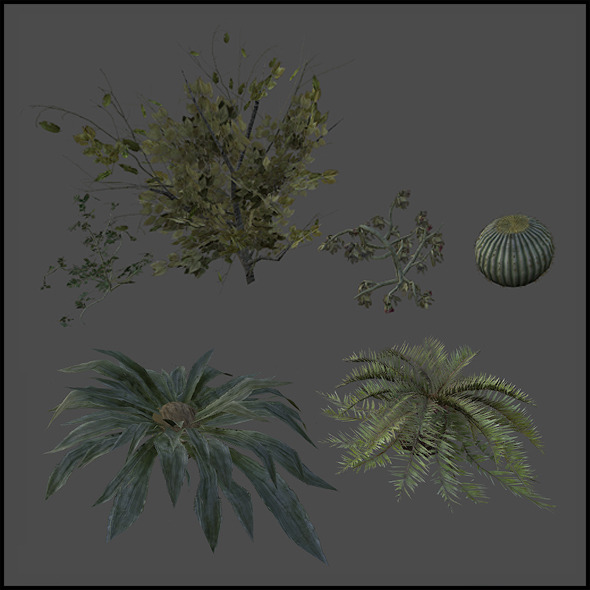 Plants Set - 3DOcean Item for Sale