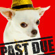 Past Due Stamp - GraphicRiver Item for Sale
