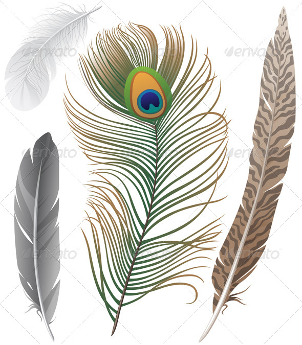 GraphicRiver Feathers 4512398