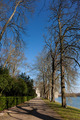 Landscape in the castle of Fontainebleau, Seine et marne, Ile de - PhotoDune Item for Sale