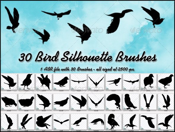 GraphicRiver 30 Bird Silhouette Brushes 4515259