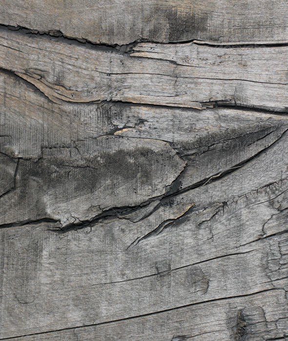 Old Wood Texure 02 - Wood Textures