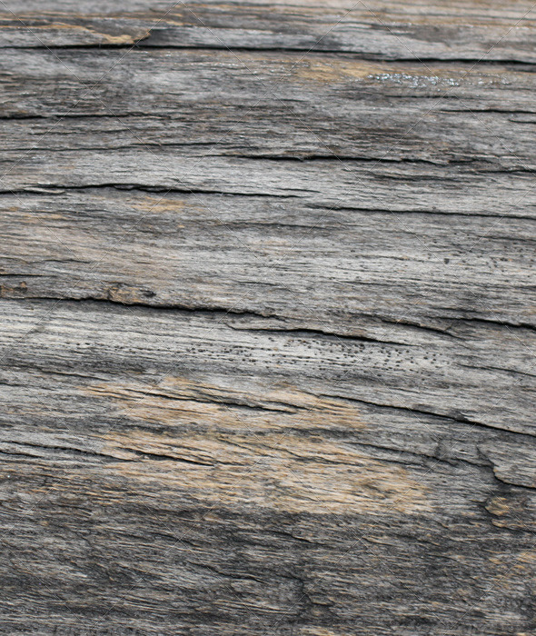 Old Wood Texure 06 - Wood Textures