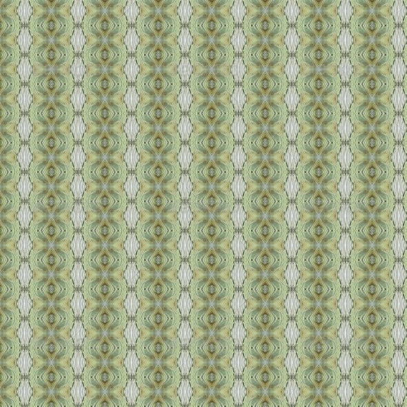 GraphicRiver Vintage Shabby Background with Classy Patterns 4523385