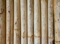 bamboo plank - PhotoDune Item for Sale