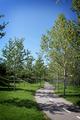 Path - PhotoDune Item for Sale