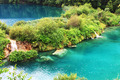 Plitvice lake with magic colors - PhotoDune Item for Sale