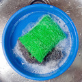 green scourer - PhotoDune Item for Sale