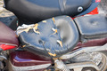 broken bike seat - PhotoDune Item for Sale