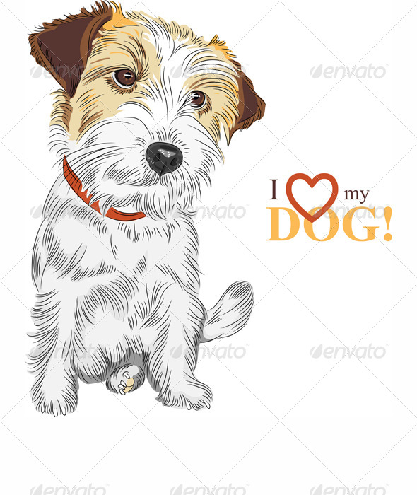GraphicRiver Vector Sketch Dog Jack Russell Terrier Breed 4534977