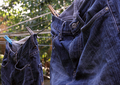 Jeans on Washing Line - PhotoDune Item for Sale