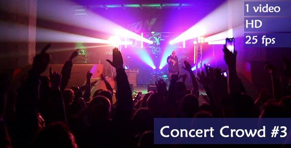 Live Concert Crowd
