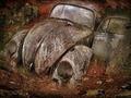 Automobile fairytale - PhotoDune Item for Sale