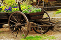 Flower Cart - PhotoDune Item for Sale