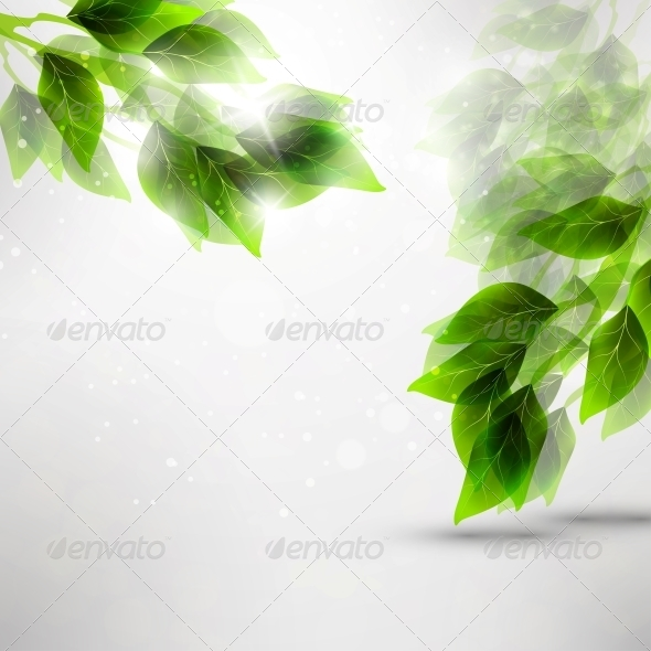GraphicRiver Beautiful Green Leaves 4548568