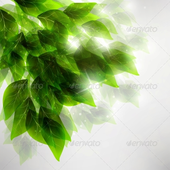 GraphicRiver Beautiful Green Leaves 4548570