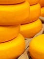 Piles of yellow Dutch cheese on a market - PhotoDune Item for Sale