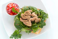 Open Tuna Salad Sandwich - PhotoDune Item for Sale