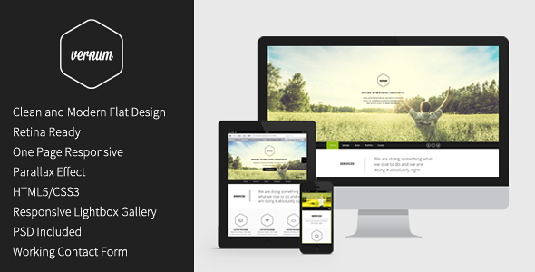 vernum responsive one page parallax template by wojciechwyszynski. Black Bedroom Furniture Sets. Home Design Ideas