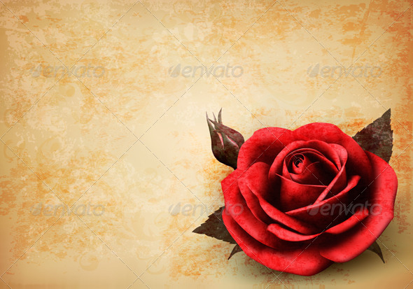 GraphicRiver Retro Background with Red Rose with Bud 4575410