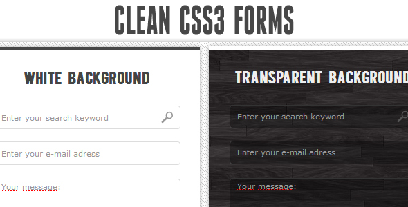 CodeCanyon Clean CSS3 input forms 461084