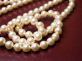 Pearls - PhotoDune Item for Sale