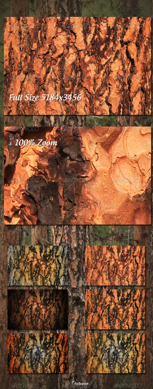 Pine Bark Texture - Wood Textures