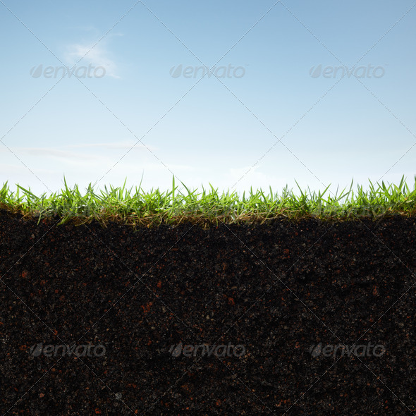 grass and soil - Stock Photo - Images