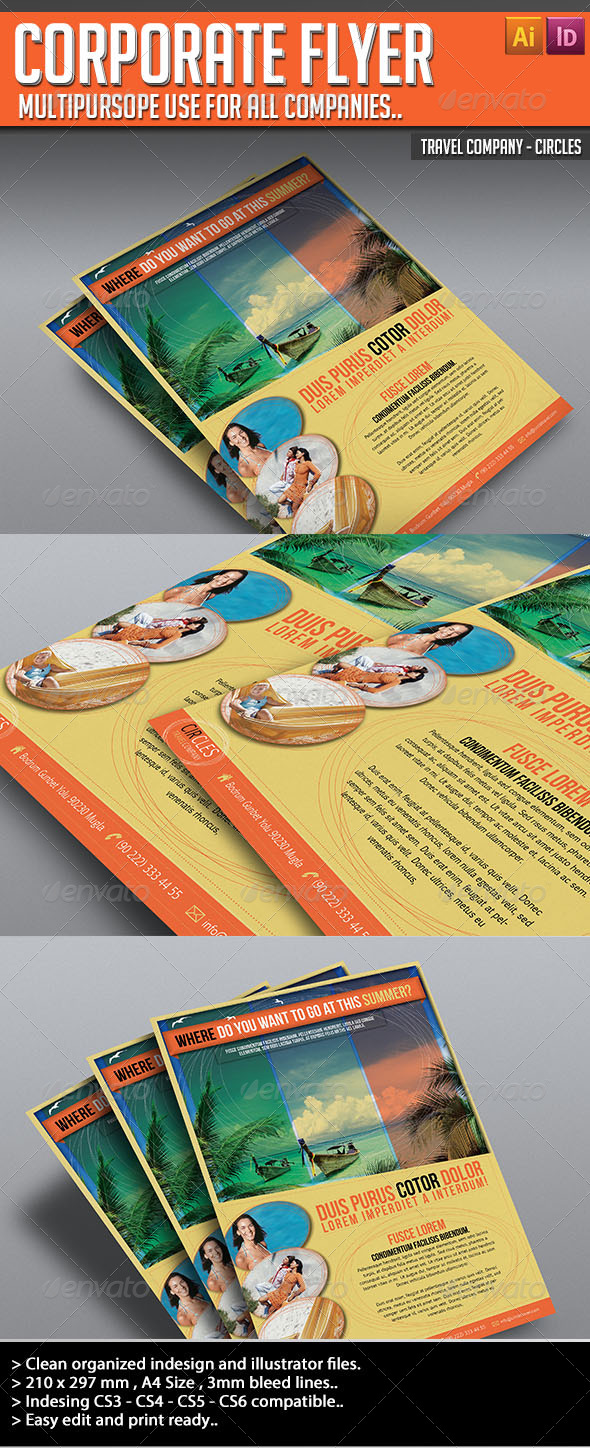 GraphicRiver Corporate Flyer Circles 4585657