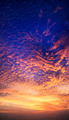Vertical panorama of spectacular sunset sky - PhotoDune Item for Sale