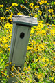 Bird House in Field of Flowers - PhotoDune Item for Sale