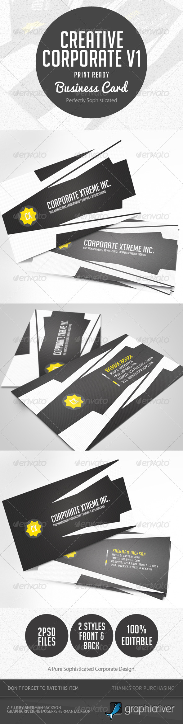 GraphicRiver Creative Corporate Business Card V.1 4590978