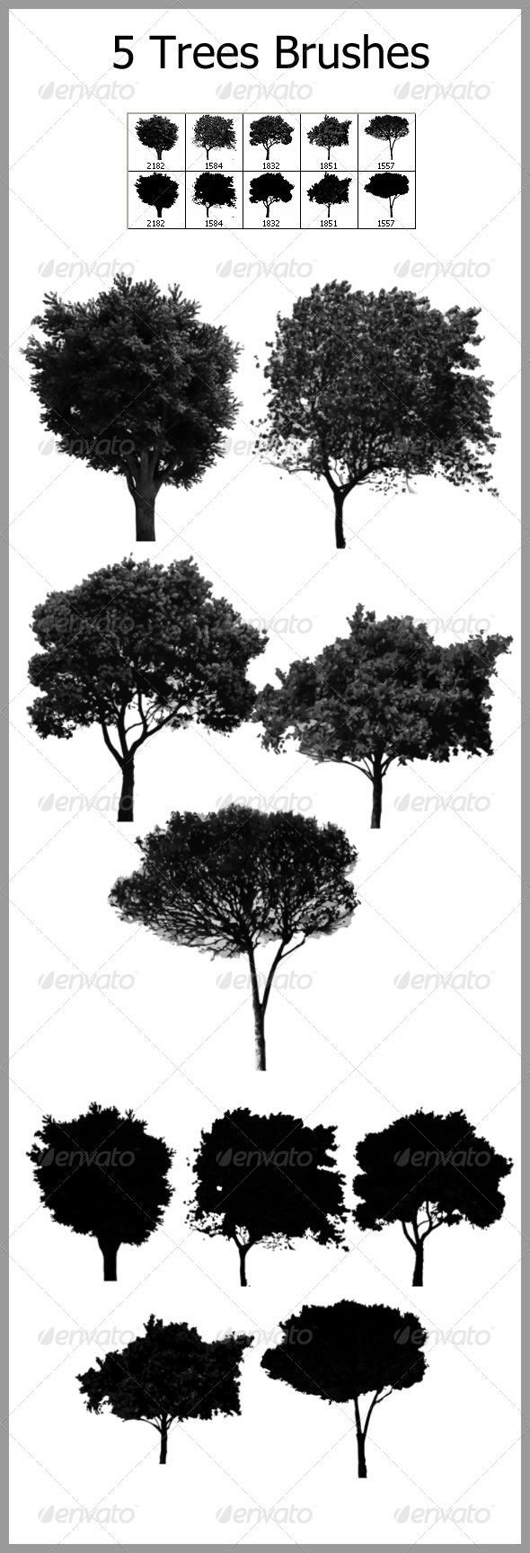 GraphicRiver 5 Trees Brushes 4591591