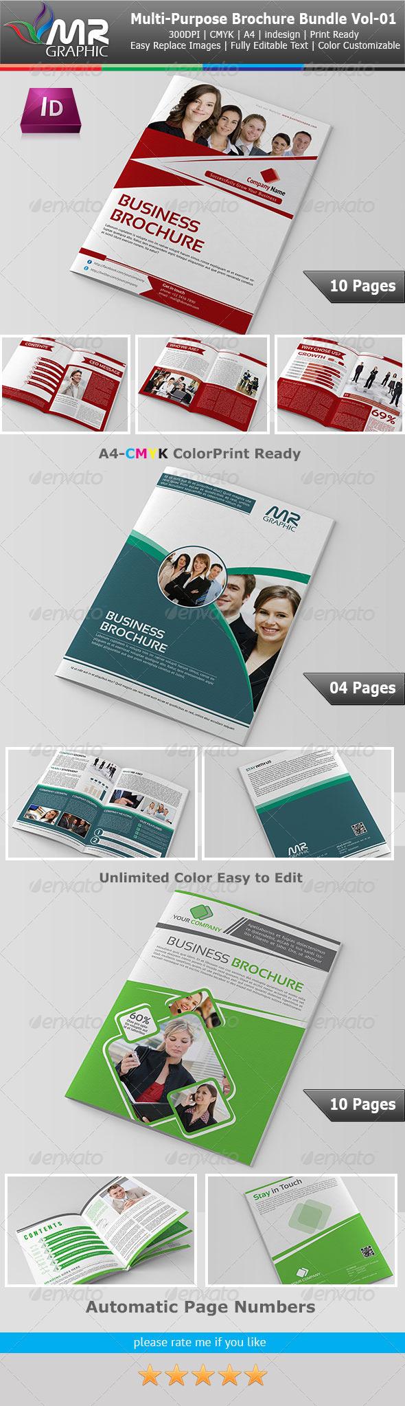 GraphicRiver Multipurpose Business Borchure Bundle Vol-01 4594443