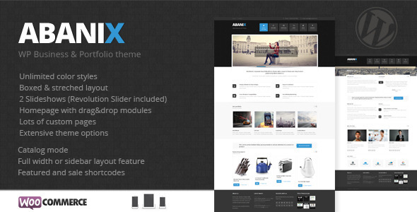 ThemeForest Abanix Business Portfolio & Shop 4596725
