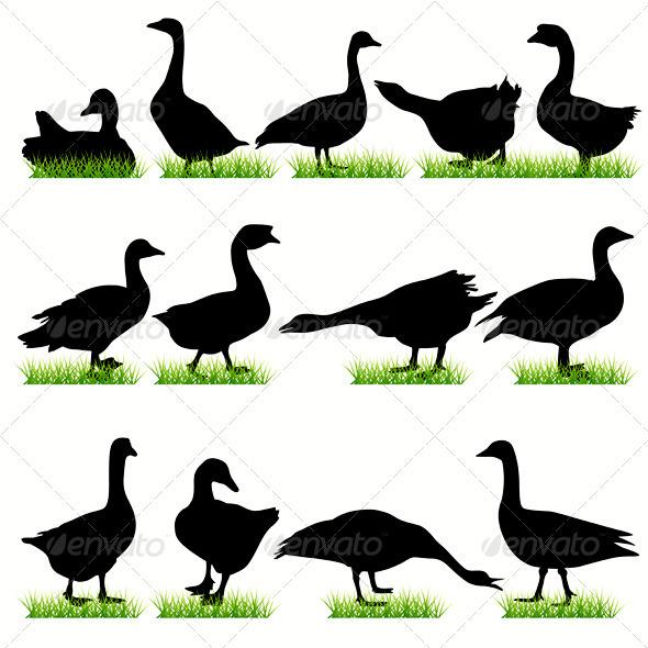 Gooses Silhouettes Set