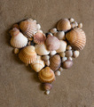 A shell heart on sand - valentine day concept - PhotoDune Item for Sale