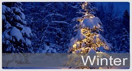 Christmas\Winter