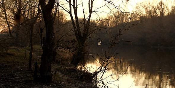 Evening River At Sunset