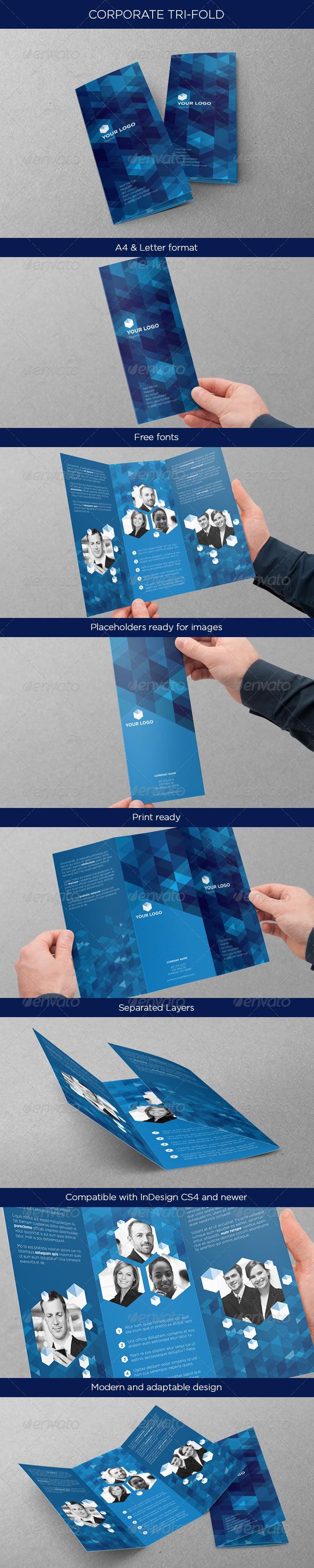 GraphicRiver Business Tri-fold 4604625