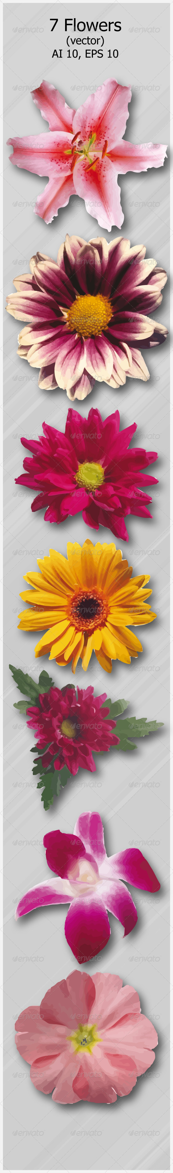 GraphicRiver 7 Flowers 4607638