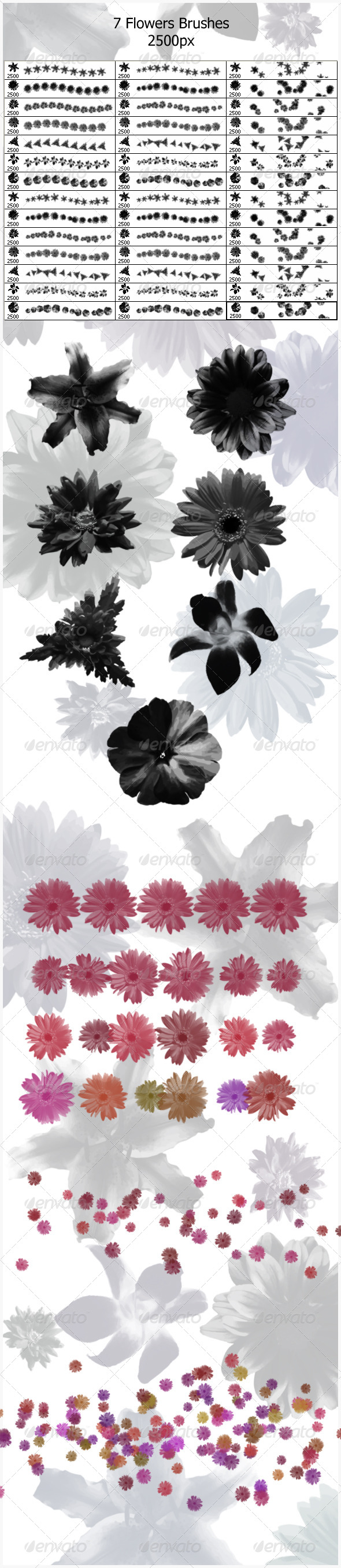 7 Flowers Brushes (2500px) - Flourishes Brushes