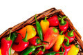 Assorted peppers in basket - PhotoDune Item for Sale