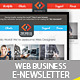 Web Design Business/Service E-Newsletter V.1