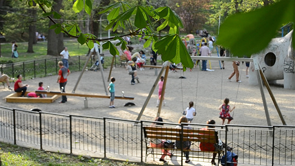 Kids And Parents At Playground
