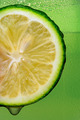 Lime with drip and Green Background - PhotoDune Item for Sale