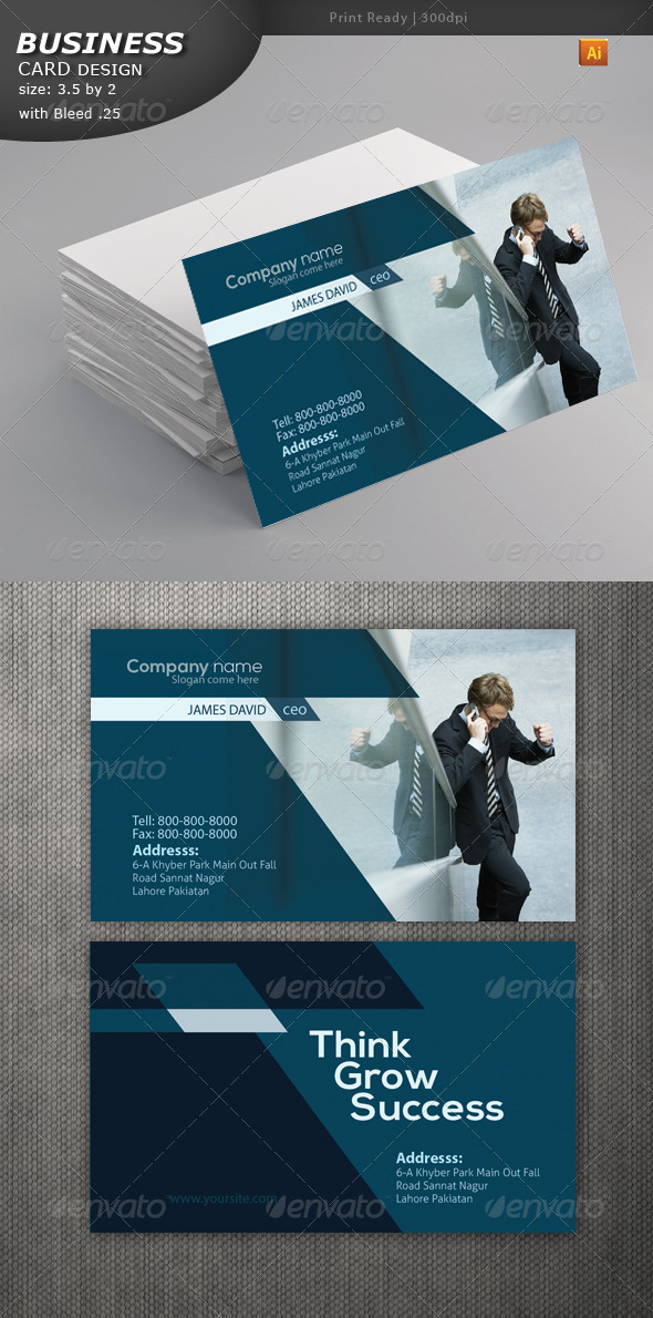GraphicRiver Business Card Design 4616993