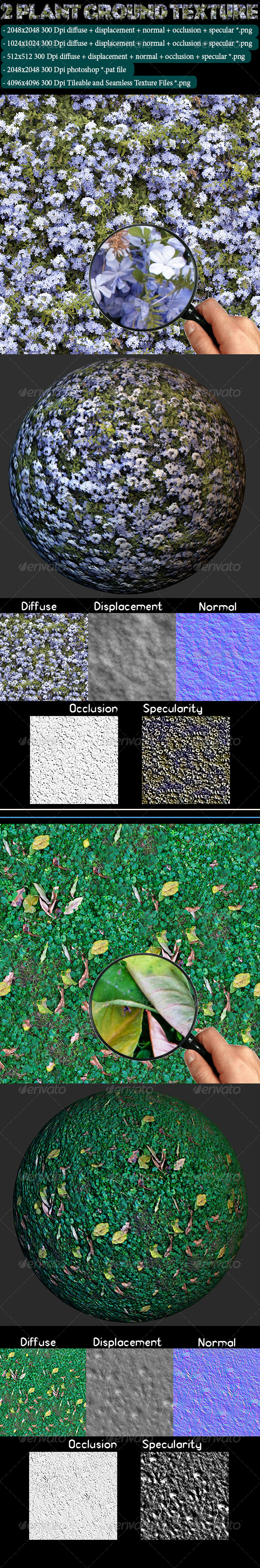 3DOcean 2 Plant Ground Texture 4617086